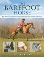 The Barefoot Horse by Lucy Nicolas